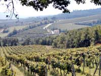 Cooking tours in Chianti