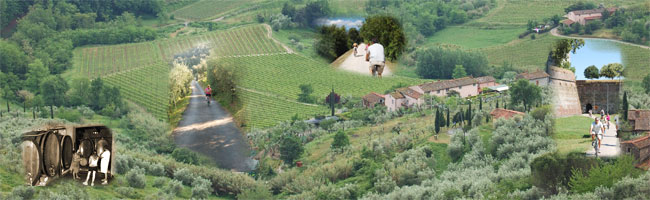 bike tours with wine tasting in Lucca countryside