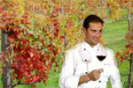 WINE TOURS guided by a licensed WINE TASTER