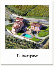 Il Borghino - Villa in the Lucca countryside between olive groves and vineyards