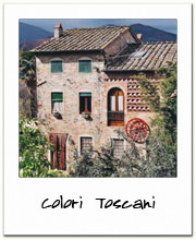 Colori Toscani  - quarry stone house in Lucca countryside - Tuscany