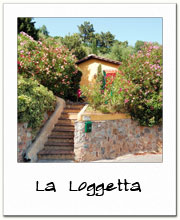 La Loggetta - panoramic rustic detached house rental in Lucca countryside